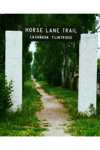 HorseTrail_jpg